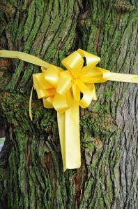 Yellow ribbon around oak