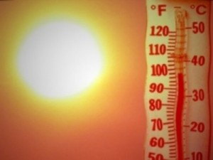 Heat wave thermometer