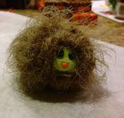 Hairy haggis